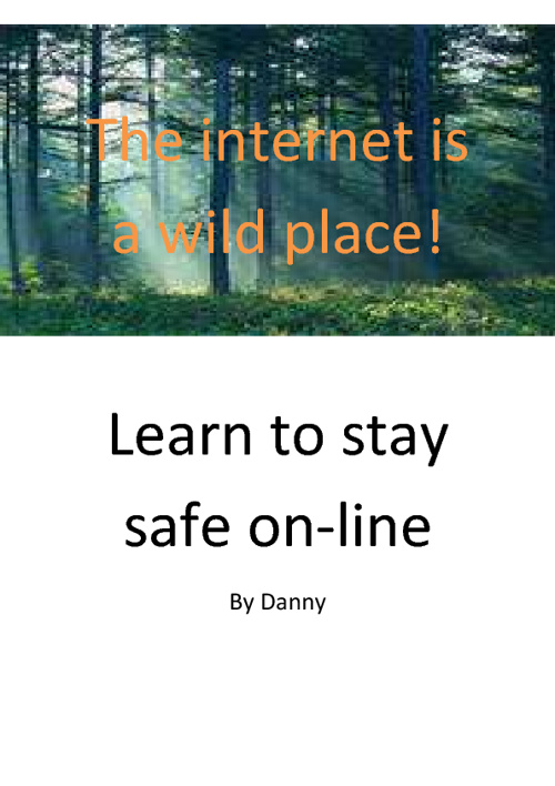 my internet safety book