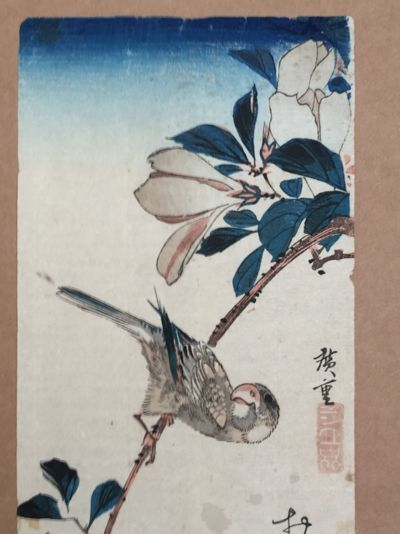 Finch on Magnolia Branch by Ando Hiroshige