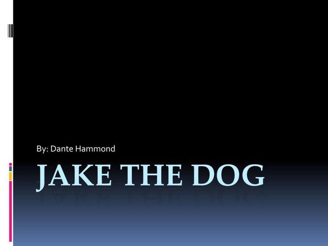 JAKE THE DOG story