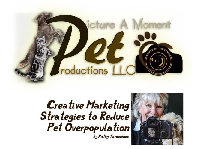 creative marketing strategies2