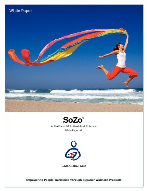 SoZo White Paper