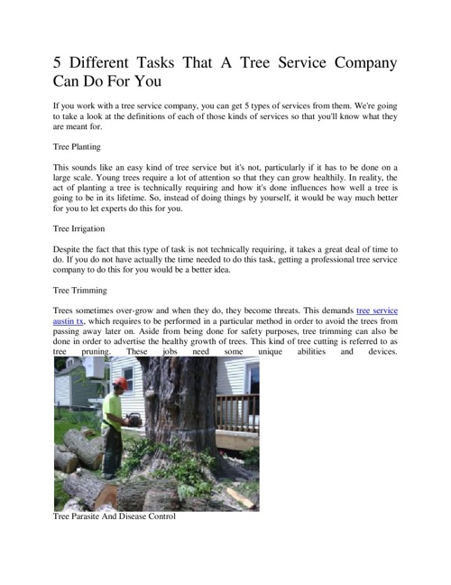 5 Different Tasks That A Tree Service Company Can Do For Yo3