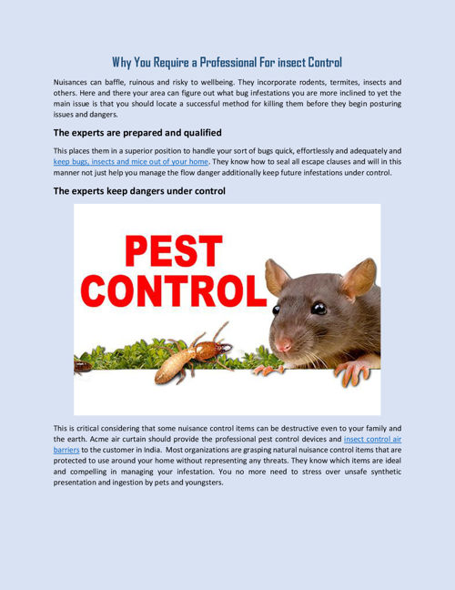 Why You Require a Professional For insect Control