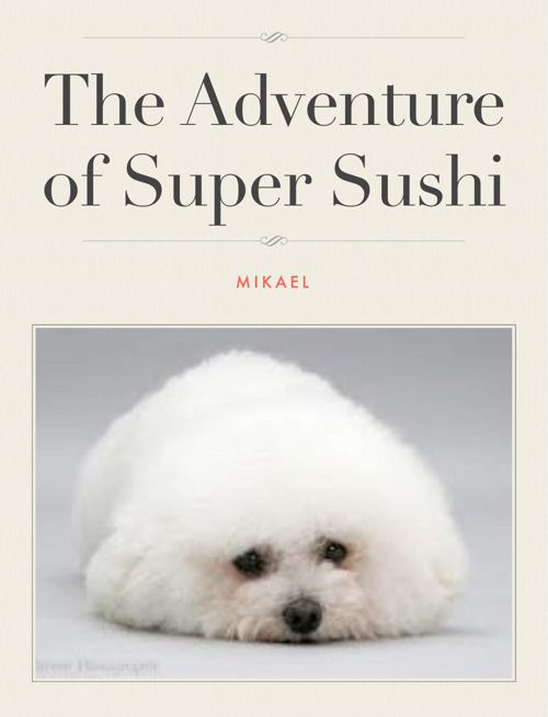 The adventures of Super Sushi