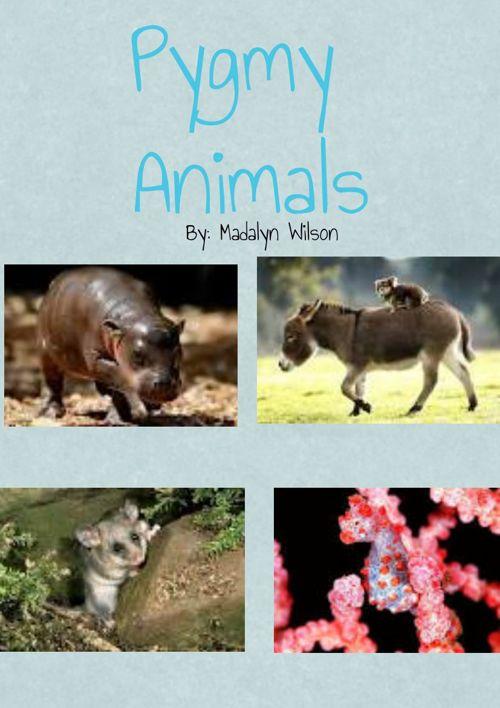 Copy of Pygmy Animals 15-24