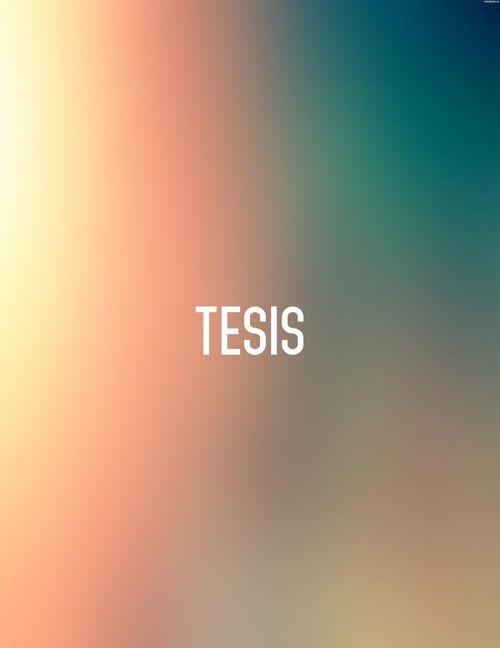 TESIS 02