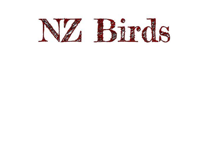 NZbirdsfilbook1316
