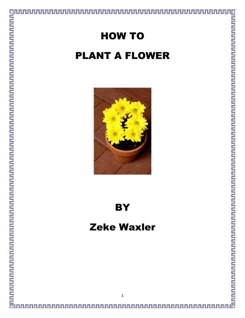 How to Plant a Flower by Zeke Waxler