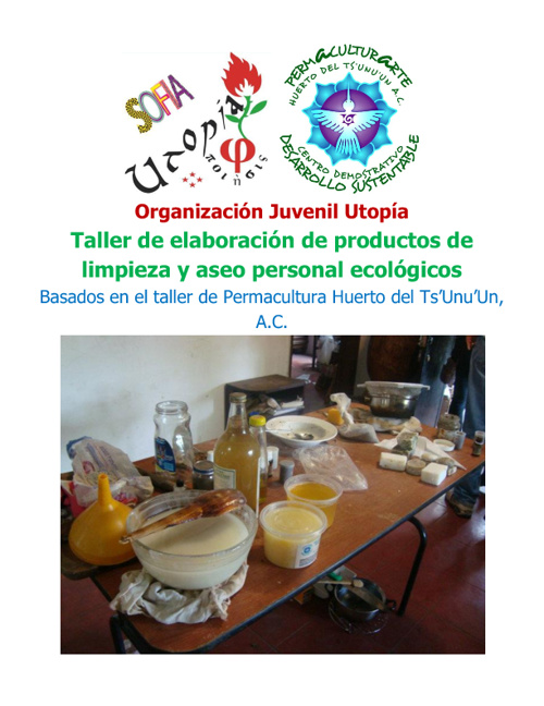Elaboración de productos de limpieza biodegradables