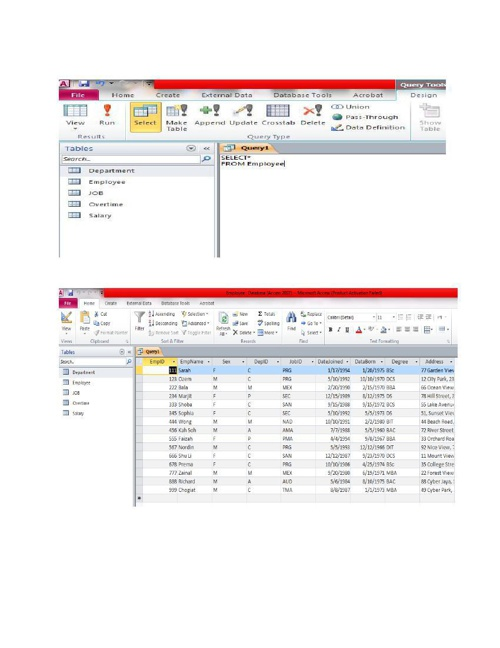 Individual assignment DATABASE