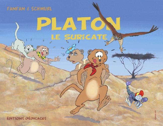 Platon le Suricate (2)