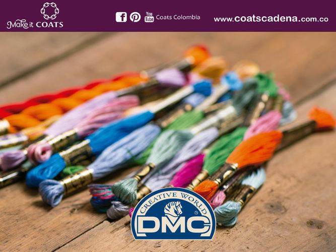 Informe DMC