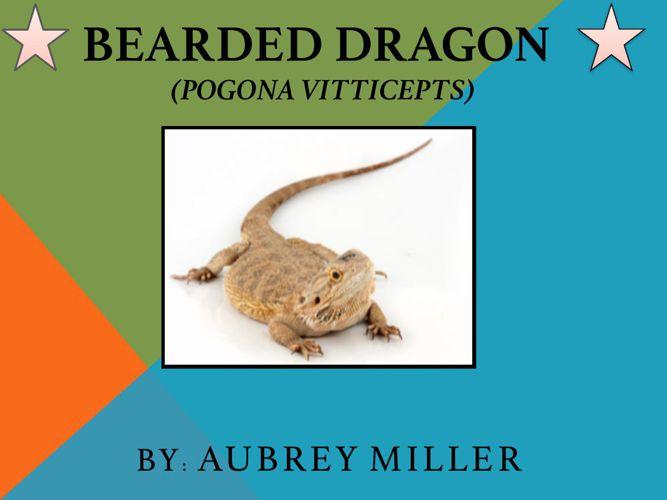Aubrey Miller-Bearded dragon book