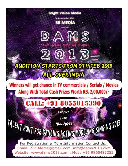 DAMS 2013 PRESENTATION