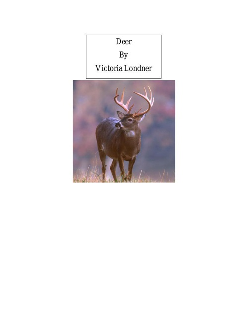 deer.docx