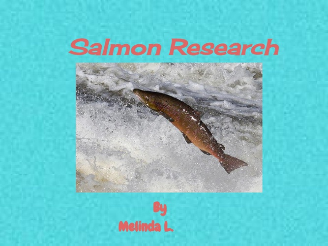 Salmon Research