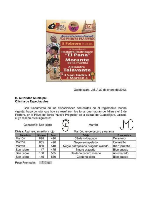 Boletìn de Prensa Gdl'13