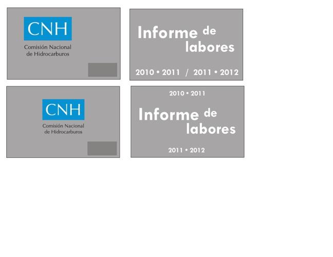 consejo nacional de hidrocarburos