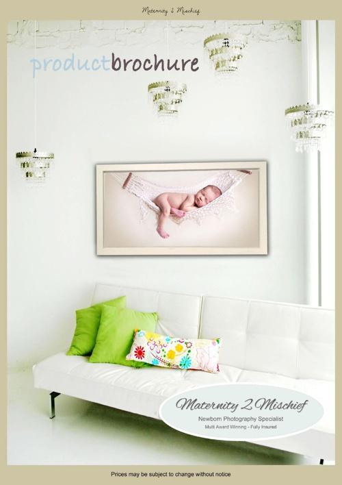 Maternity 2 Mischief - Pricing Brochure
