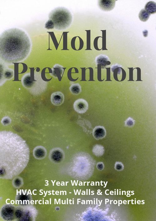 Commercial Property Mold Prevention