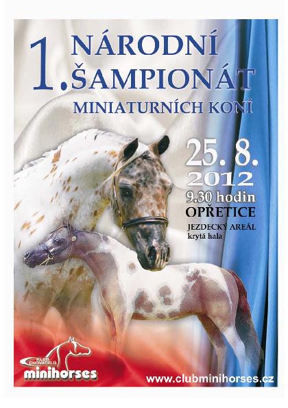 Výsledky I. národní šampionát Opřetice 2012
