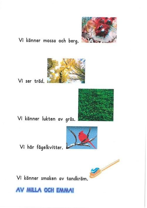 Diktbok åk 2