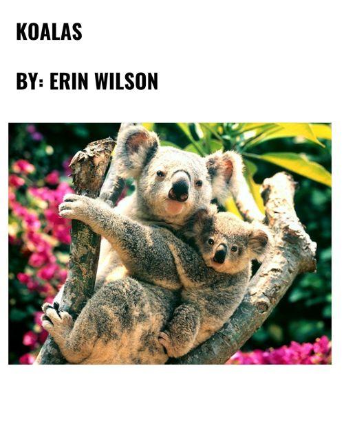 My cute koala project :)
