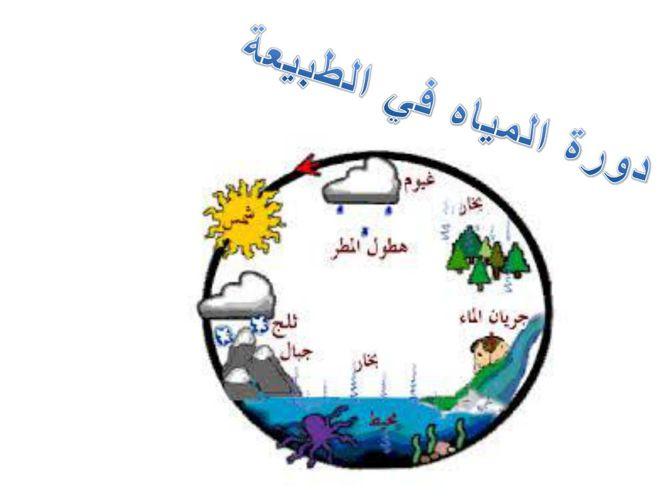 دورة المياه في الطبيعة