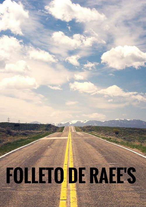 QUE ES EL RAEE'S.docx