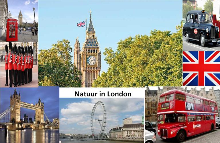 Natuur in London
