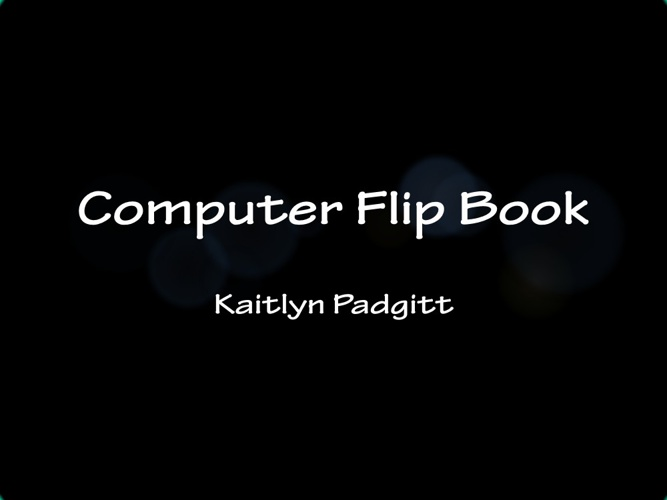 Computer flip book