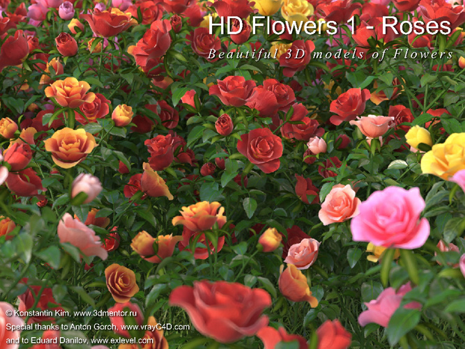 05_3DMENTOR - HD FLOWERS VOL.01