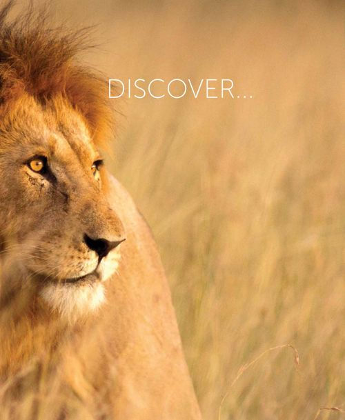 andBeyond Discover South Africa Brochure