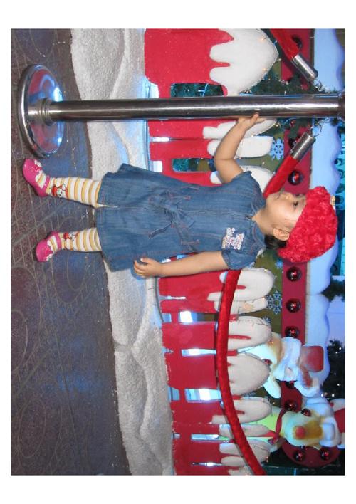 Giáng sinh 2011