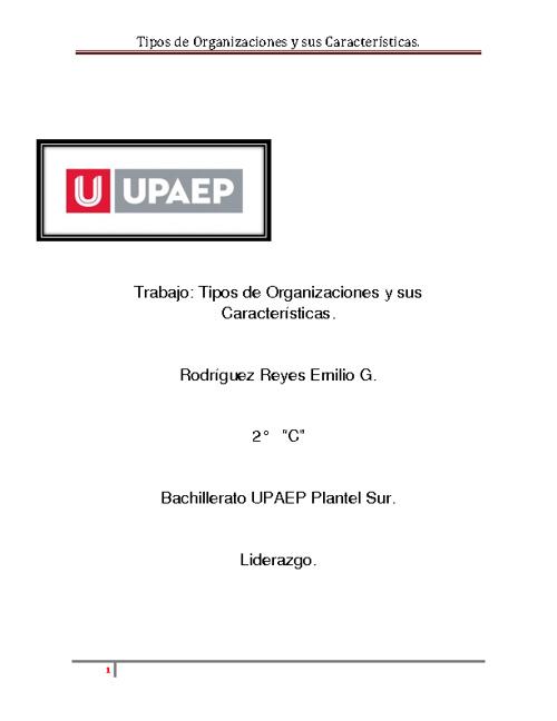 Tipos de Organizaciones y sus Características.