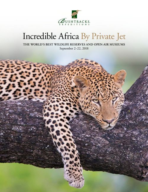 Incredible Africa by Private Jet 2018