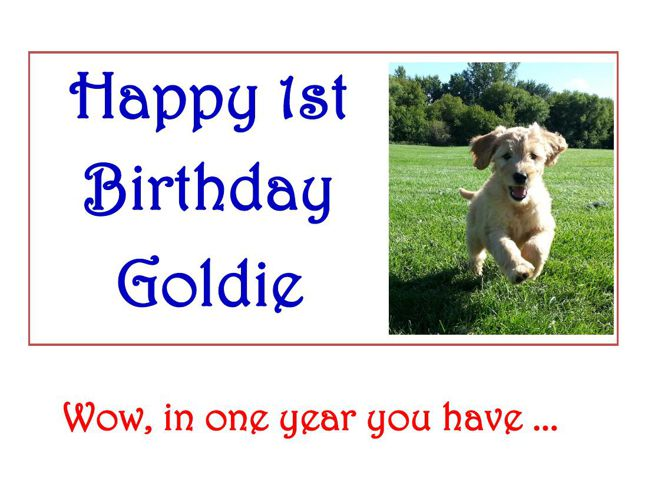 Goldie's B-day