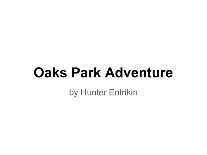 Oaks Park Adventure