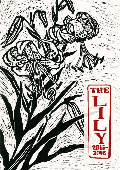 The Lily 2016