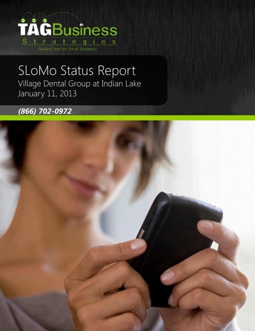 VDG Status Report 20130111