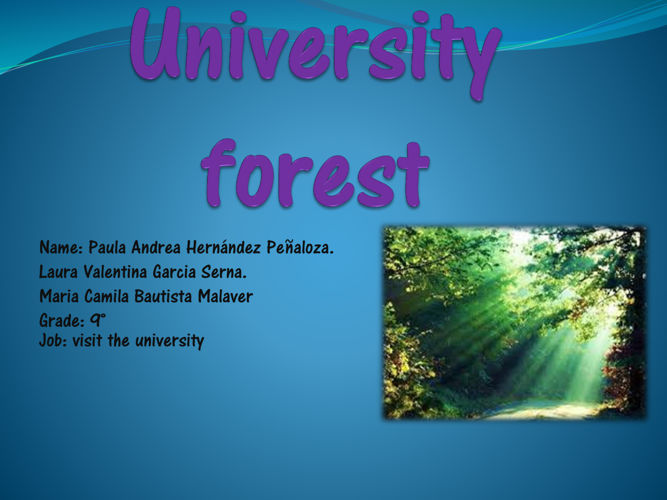 University forest