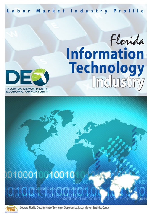 Copy of Florida's Information Technology Profile 2013
