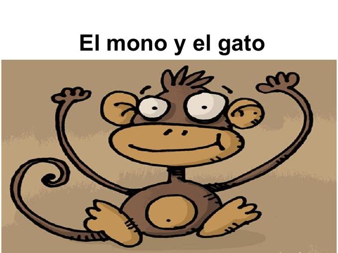 El Mono Y El Gato