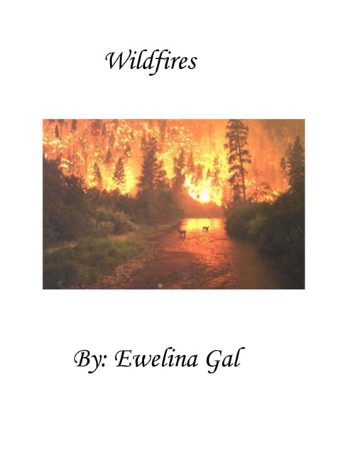 Wildfires  By: Ewelina Gal