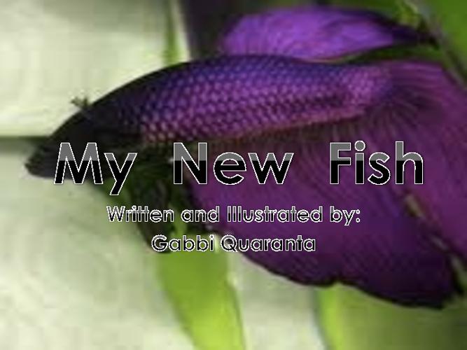 My New Fish by Gabbi Quaranta
