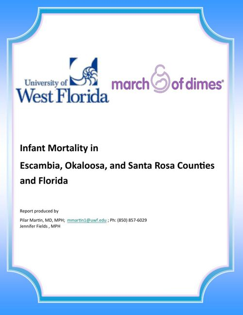 Minority Infant Mortality Report