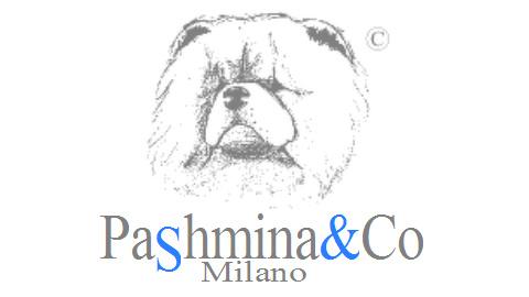 Pashmina&Co