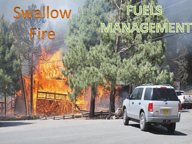 Swallow Fire
