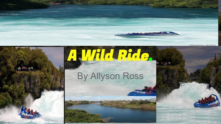 A wild Ride (1)