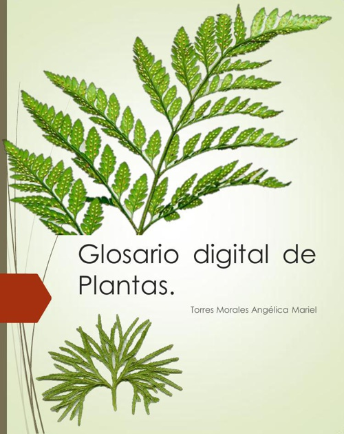 Glosario digital. Torres Angélica.